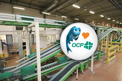 OCP - Grossiste répartiteur au service client sans faille