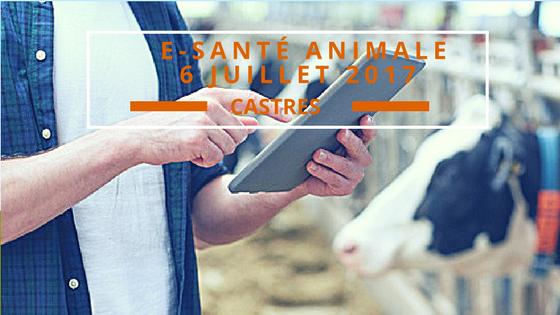 E-Santé ANIMALE